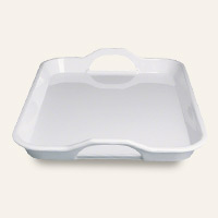 Plates & Trays