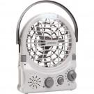 Companion Fan with radio